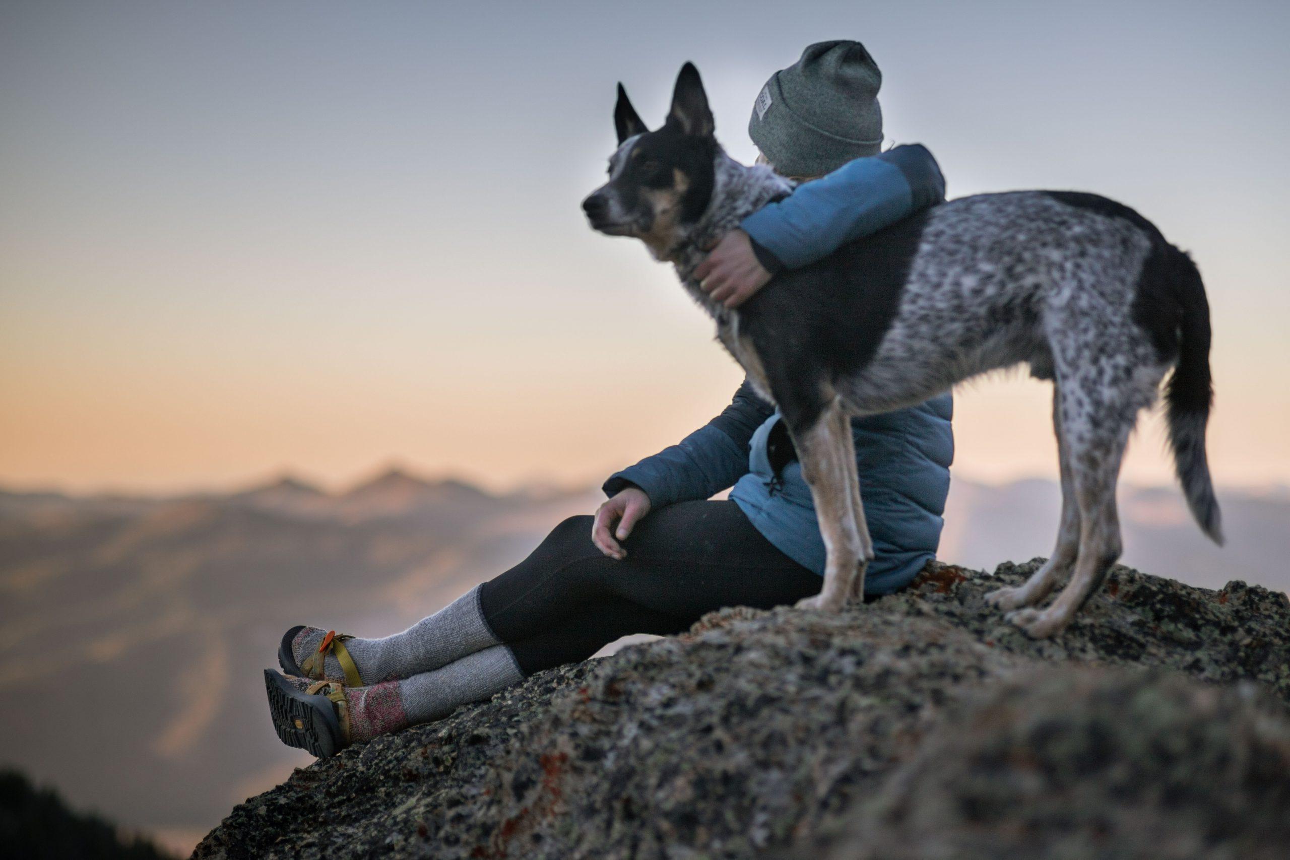 El apoyo de nuestras mascotas en salud mental